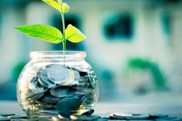 20150825140419-investments-banking-wealth-money-coins-plant-growth-success